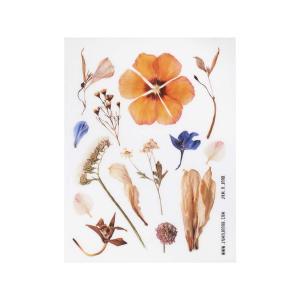 برچسب شفاف جمع و جور طرح Dry Flower